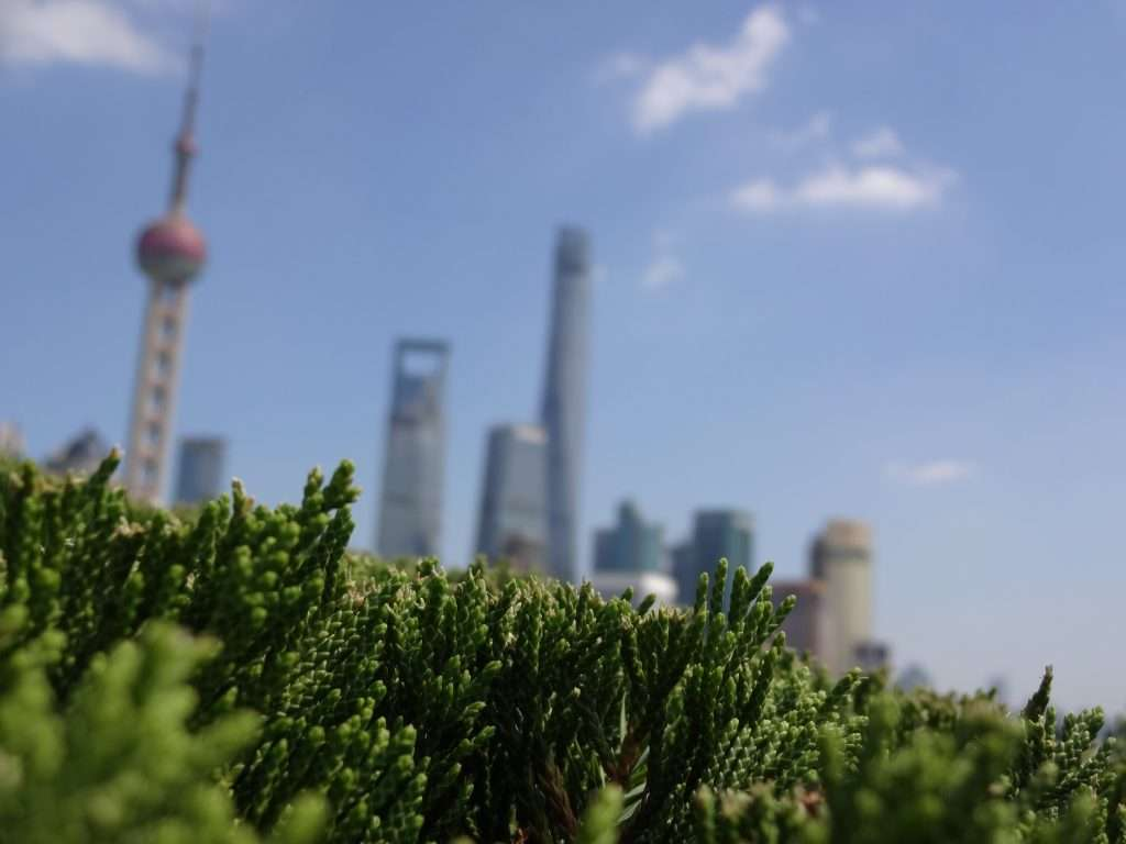 Shanghai Promenade: The Bund