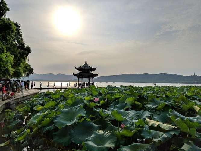 Work in Hangzhou - Natural Gardens